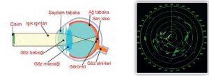 Gözlem ve Kuramın Astronomideki Yeri ve Işın Türleri 2