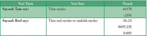 Sayısal Veri