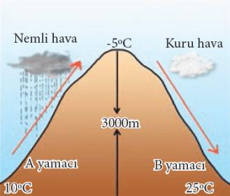 Rüzgâr Türleri ve Özellikleri Nelerdir? 17 – fohn ruzgari