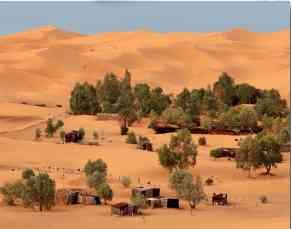 Günümüzde de göçebe olarak varlıklarını devam ettiren bedeviler ve çadırları