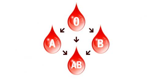 Kan grubu diyetleri