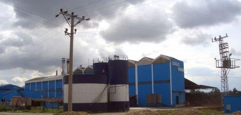 Pirina Yağ Fabrikası
